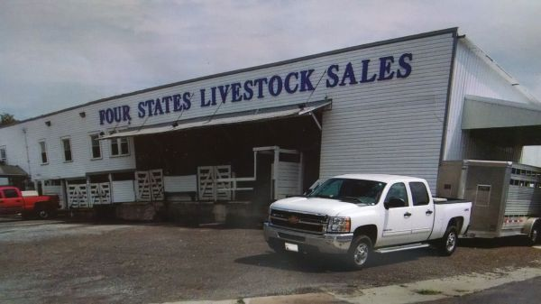 4states-livestock-auction
