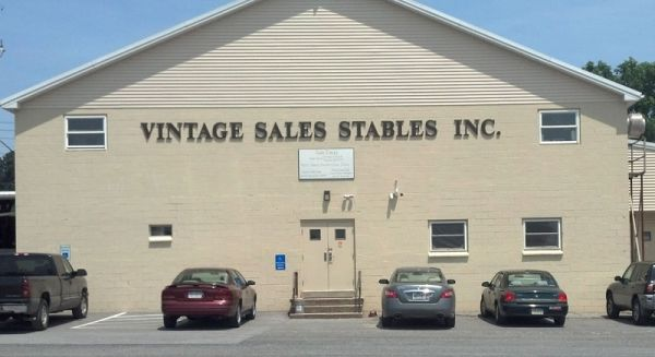 Vintage Sales Stables, Inc.